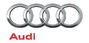 Immatriculation-Luxembourg_Audi